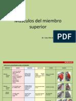 musculos miembro superior.pptx
