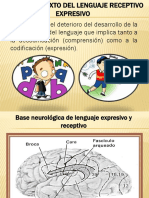 Trastorno mixto del lenguaje receptivo expresivo