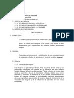(Informe) de Rocas Igneas