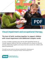 CVI and sensory Integration