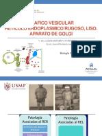 Bcm-trafico Vesicular - 2019-2 Impresión