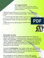 13 Paradigma de Campos Sociales