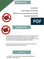 ICIND412 05