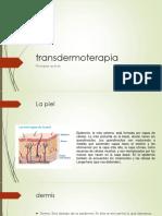 Taller Transdermoterapia