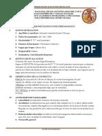 Informe Ps