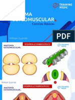 Osteomuscular Parte 1