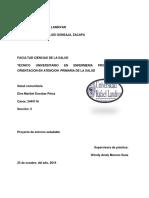 PROYECTO DE Entorno Saludable.... (1)