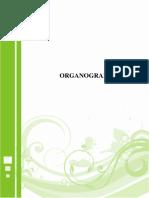 Organograma - Saiba Mais
