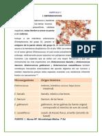 Enterecoccus, Listeria, Erysipelothrix