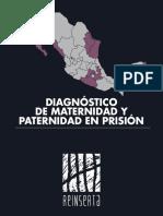 DIAGNÓSTICO DE MATERNIDAD Y PATERNIDAD EN PRISIÓN REINSERTA