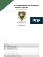 ANGIOSPERMAS_PRESENTA.pdf