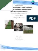 Perfil de Proyecto Fortalecimiento de la Produccion de Pilones.docx