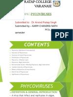 KARM (Phycoviruses)