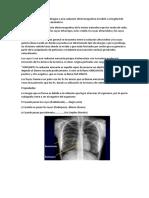 Anatomía Informe