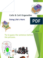 Parts of the Cell Students Copy