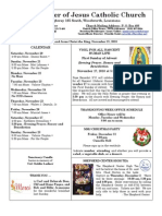 MMJ Bulletin 11-21-10