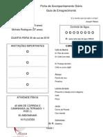 Ficha de Acompanhamento Diário