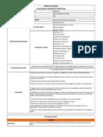 Analisis y Descripcion de Puestos Pilar y Mafe (2)