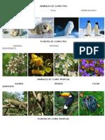 338255611-Animales-de-Clima-Frio.pdf