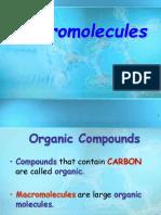 Lesson 6 Macromolecules