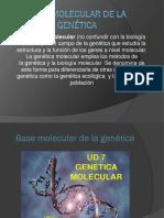 Trabajo Biologia Yesid Duvan Tijaro 4b