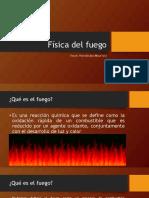 234068135-Fuego.pdf