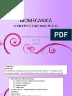 1 Biomecanica Conceptos Fundamentales