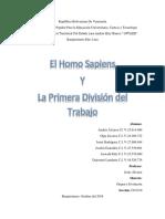 Homo Sapiens y Division Del Trabajo