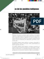 08PueblosIndígenas-2.pdf