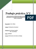 TP Nº 1. LESIW.docx