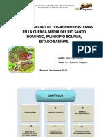 Sustentabilidad de Agroecosiatemas Cuenca Del Rio Santo Domingo, Barinas