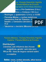 1_MataAtlantica