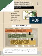 Microalgas Para La Produccion de Biocombustible Final