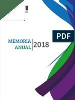 Memoria Anual Smv 2018vf (2)