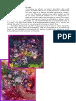 166952003-Tehnica-Picturii-in-Ulei.pdf