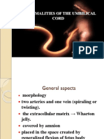 10-abnormal-umbilical-cord.ppt