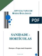 horticultura em modo biologico.pdf