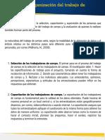 Planeacion_Organizacion