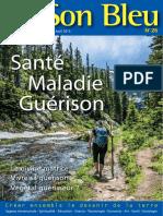 revue26-Santé-Maladie-Guérison