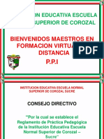 Reglamento PPI (8)