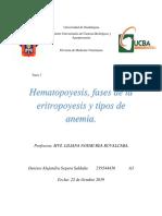 Hematopoyesis, fases de la eritropoyesis y los tipos de anemia