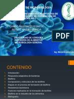 Activación de La Respuesta Adaptativa de Bacterias Micro