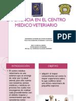 Experiencia en El Centro Medico Veteriario