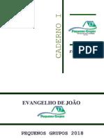 Evangelho de João Pg 2018