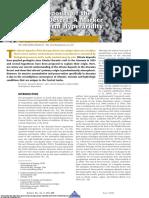 Nitrate Deposits of the Atacama Desert