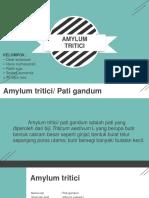 amylum tritici