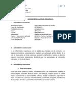 info peda 2019.docx