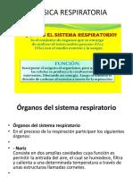 Biofisica Respiratoria 13 (2)