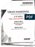 2019 UN BIO.pdf