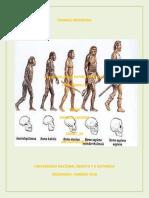 Fase 1 Conceptualizacion Antropologia